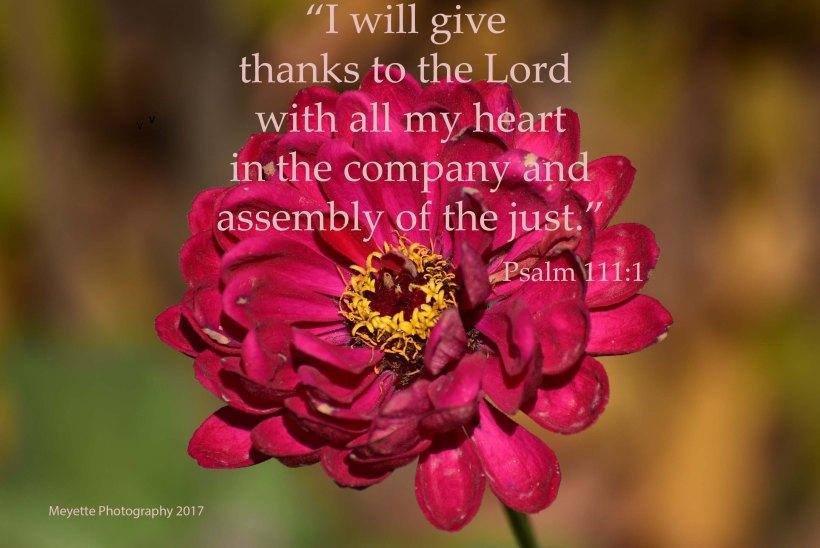 psalm111-1